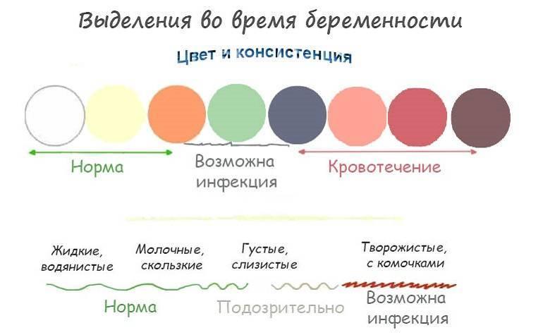 Выделения при беременности во втором триместре: красные, розовые, белые и коричневые секреции, о причине происхождения которых нужно знать