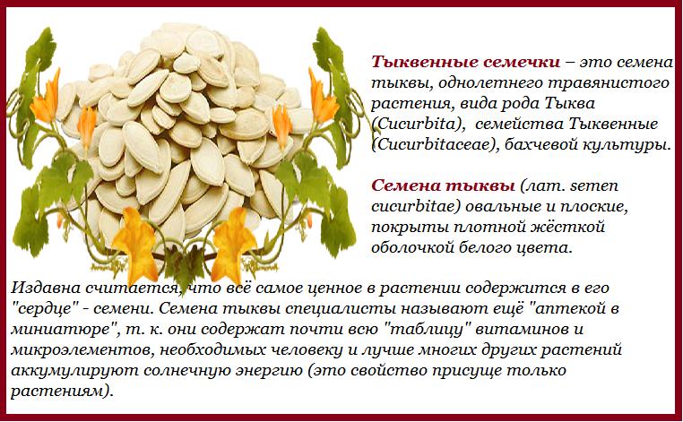 Семечки (тыквенные, подсолнуха, кунжутные, льняные) при беременности: польза и вред, можно ли грызть на ранних и поздних сроках
