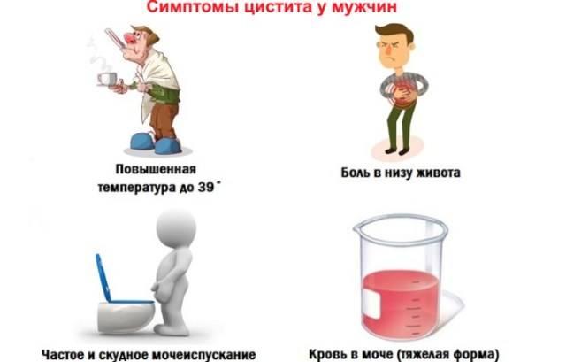 Цистит у детей в 6-8 лет: лечение (медикаменты, народные средства), симптомы, формы, причины, диагностика, осложнения, профилактика