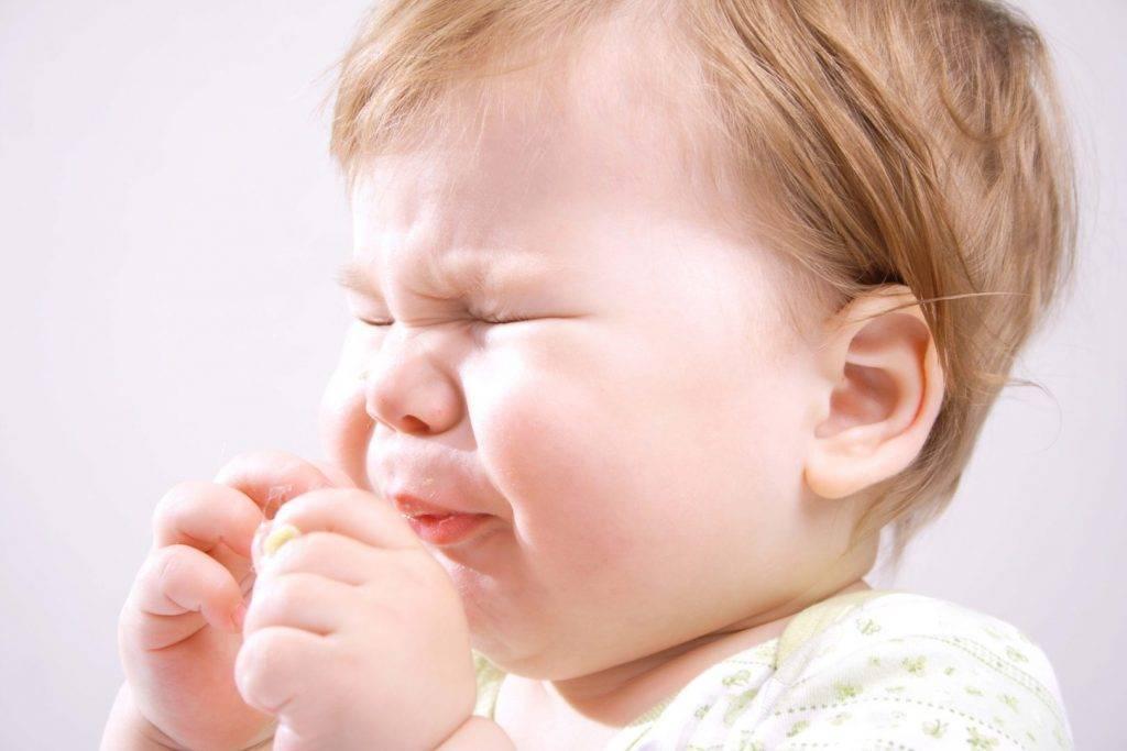 Аллергия на собаку у ребенка: симптомы, причины и лечение недуга