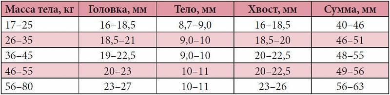 Размеры селезенки у детей в норме таблица