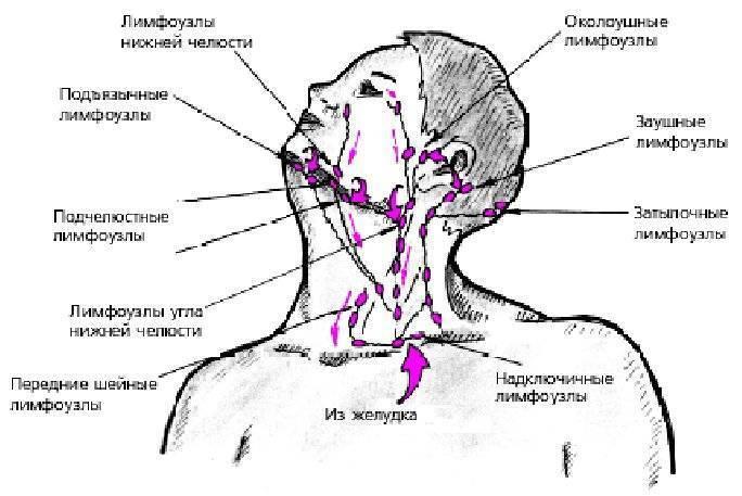 Воспалился за ухом лимфоузел: симптомы, что делать, лечение