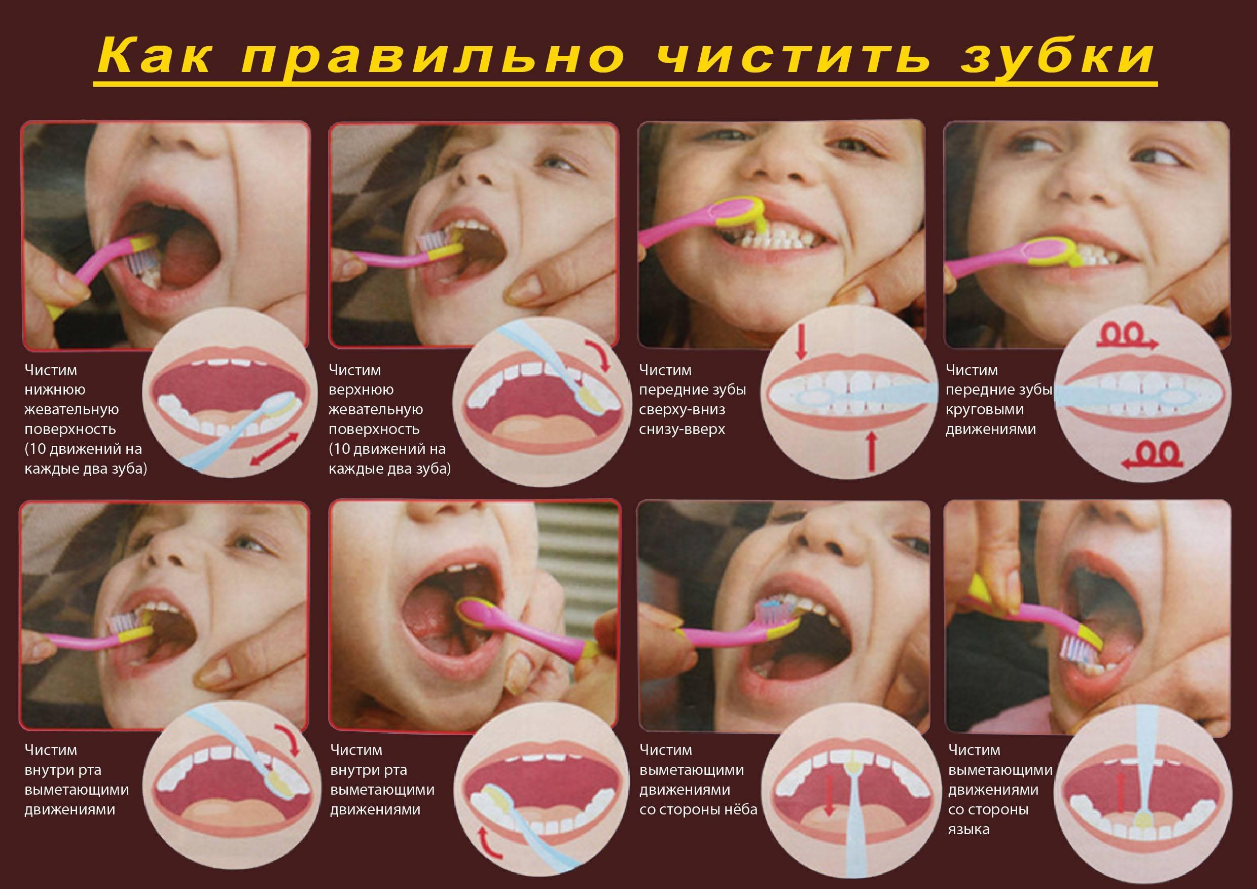 Как научить ребенка чистить зубы | уроки для мам