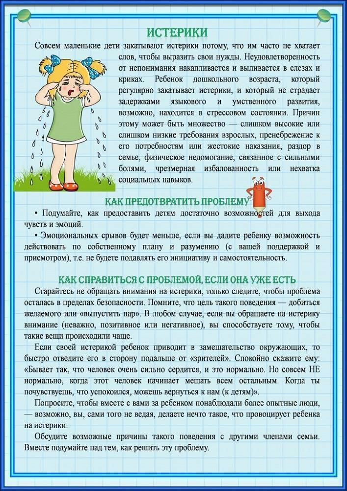 Истерика перед детским садом - 4 совета психологов, консультации