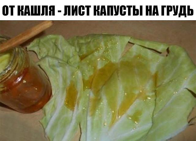 Ккапустный лист от кашля с медом для ребенка и взрослого - рецепты