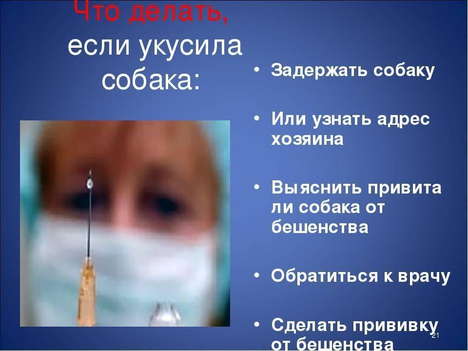 Ребенка укусила собака: что делать в домашних условиях, нужна ли прививка от столбняка?
