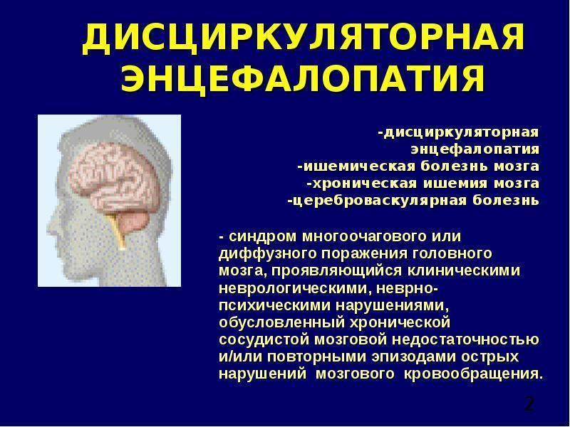 Органическое поражение мозга и цнс: причины, проявления, диагностика, лечение, прогноз