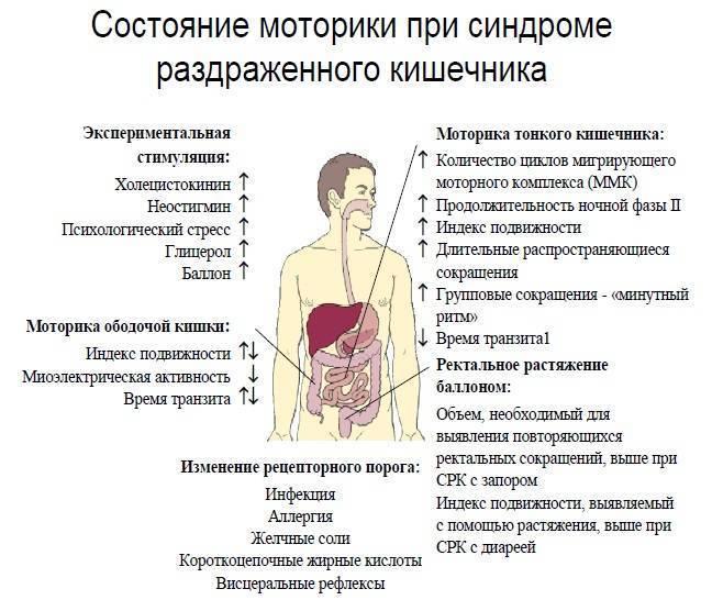 У ребенка синдром раздраженного кишечника симптомы и лечение - лечение
