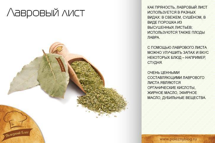 Рецепт выкидыша лавровым листом - healingcraft.ru