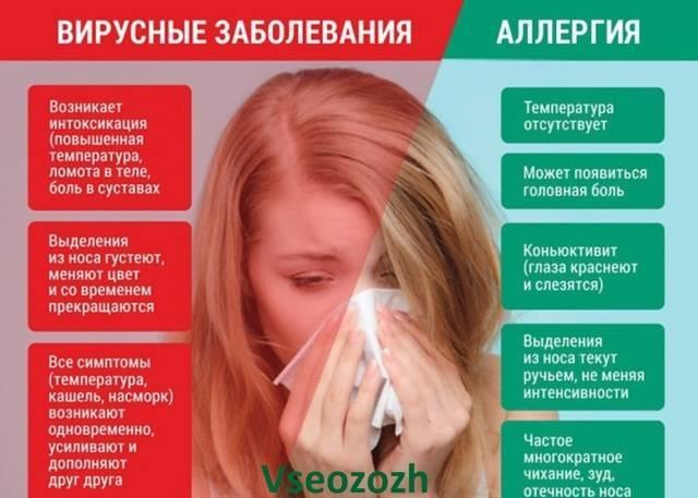 Заложенность носа при беременности: почему возникает, проявления состояния, как бороться с проблемой