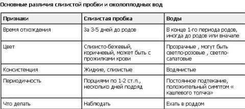 Как и когда отходит пробка перед родами / mama66.ru