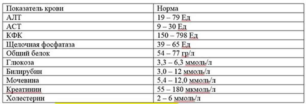Повышенная щелочная фосфатаза у детей: диагностика, коррекция