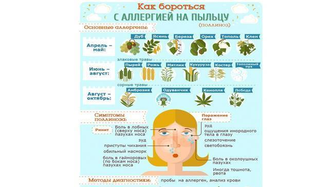 Аллергия на пыльцу симптомы • аллергия и аллергические реакции