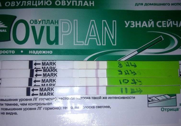 Как использовать тест на овуляцию ovuplan