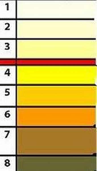 Почему моча у ребенка может быть бесцветной, желтого, оранжевого и другого цвета и каковы варианты нормы?