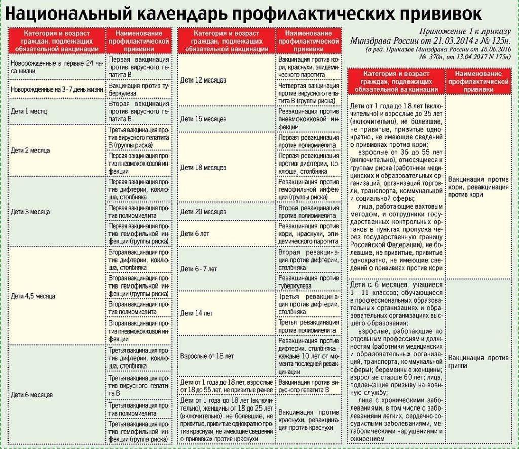 Прививки детям до года: график вакцинации, календарь прививок в росии / mama66.ru