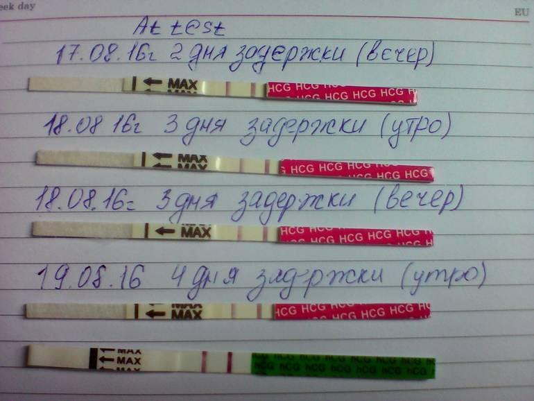 Задержка месячных, но тест отрицательный??? что может быть если задержка 5,7,10 дней и далее