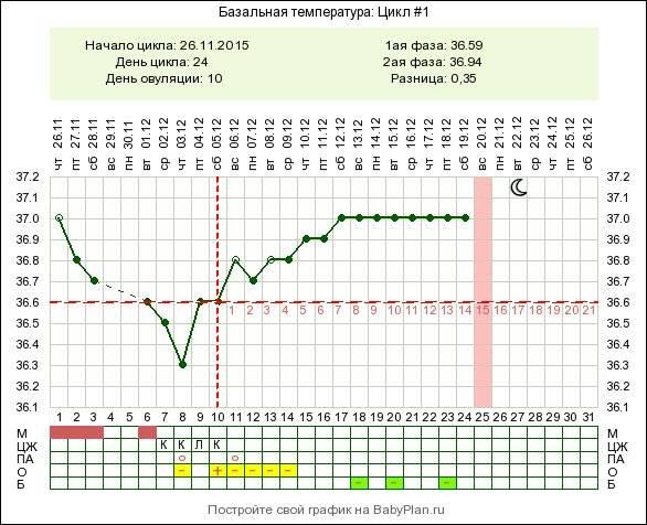 ᐉ повышение температуры в начале беременности. низкая температура тела на поздних сроках беременности. нормальные показатели бт - ➡ sp-kupavna.ru