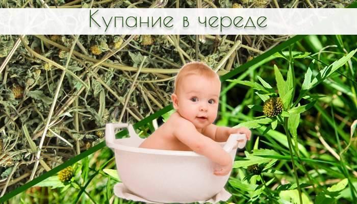 Череда для купания новорожденных: как заварить, сколько нужно, польза