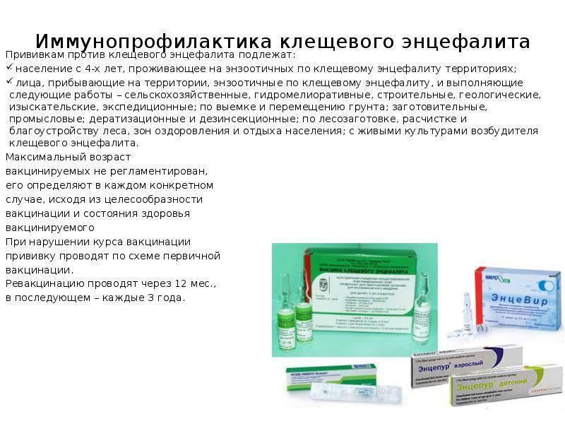 Прививка от клещевого энцефалита противопоказания