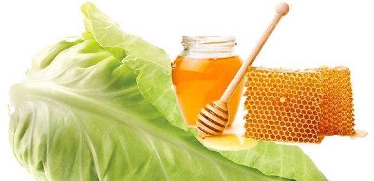 Рецепт от кашля ребенку: компресс из капусты с медом