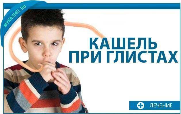 Кашель при глистах у взрослых: какие глисты вызывают кашель, методы лечения, отзывы