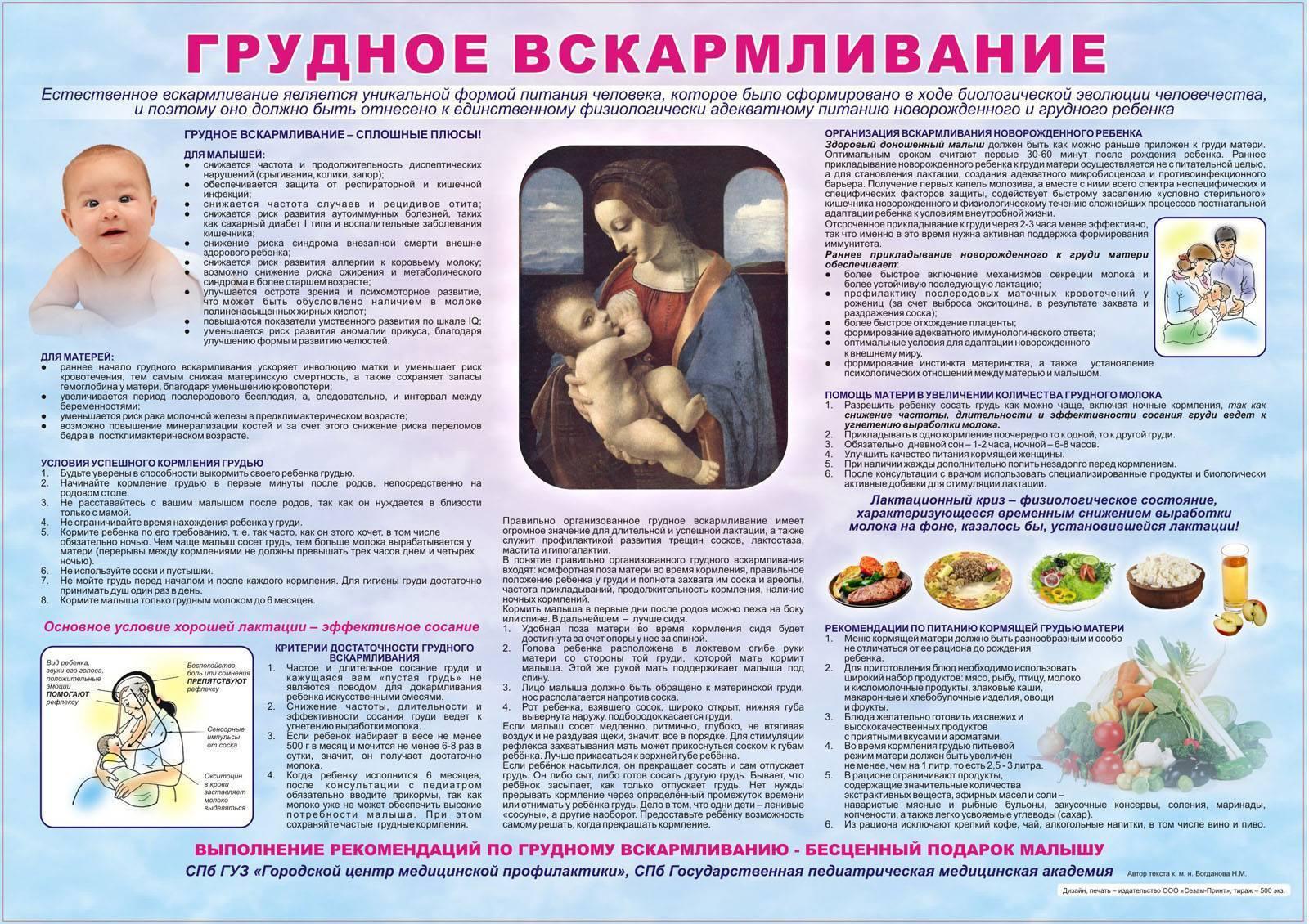 Позы кормления грудью удобные для мамы и правильные для ребенка