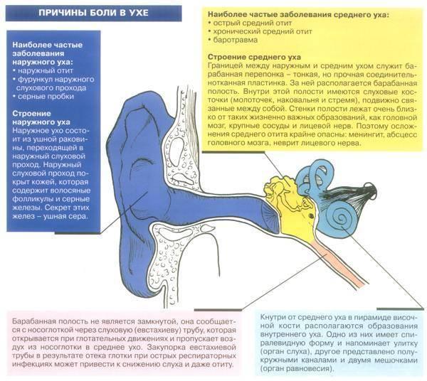 У ребенка стреляет ухо: что делать в домашних условиях pulmono.ru у ребенка стреляет ухо: что делать в домашних условиях