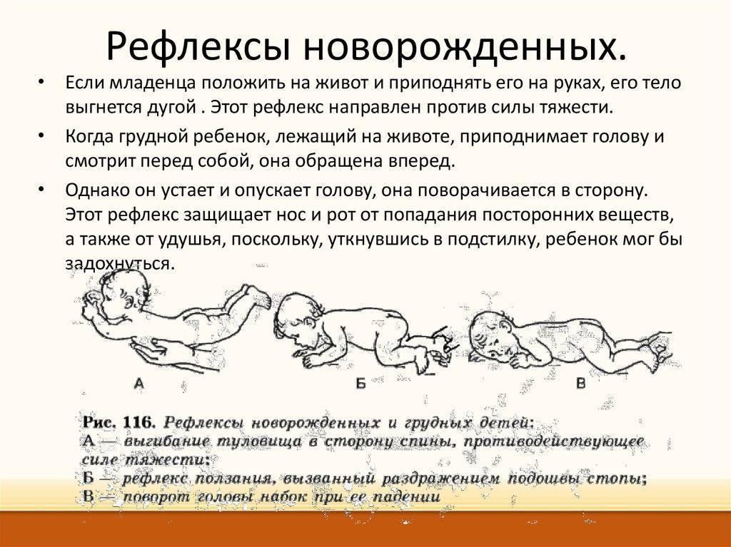 Эффект моро у младенцев до какого возраста или рефлекс моро у новорожденных: синдром у грудничка, суть эффекта у детей и нормы stomatvrn.ru