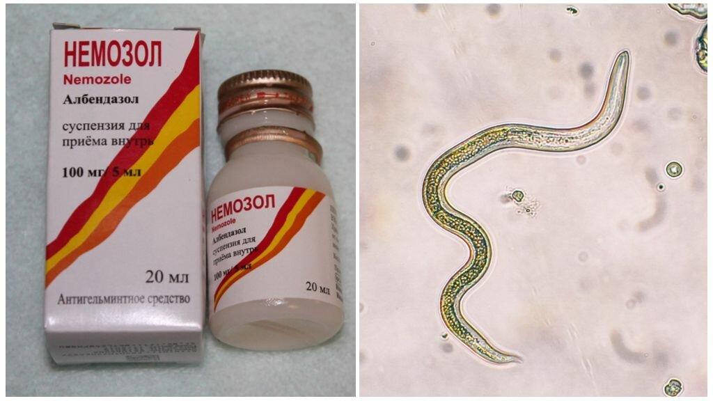 Немозол: инструкция по применению для детей и для чего он нужен, таблетки, суспензия, сироп, аналоги, отзывы