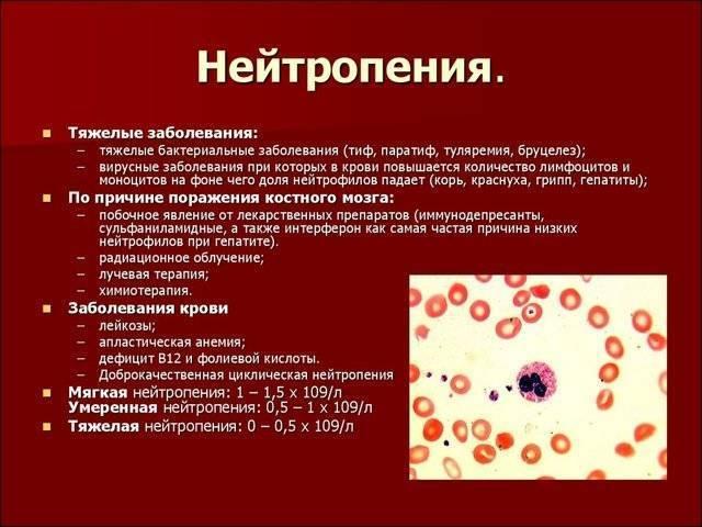 О чем говорит количество лейкоцитов в крови. норма и причины отклонения от нее