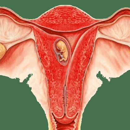 Зуд и жжение перед месячными в интимной зоне– основные причины