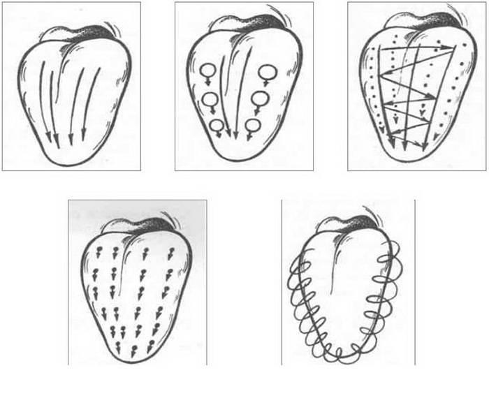 Логопедический массаж языка зубной щеткой - простой способ устранить дефект речи у детей