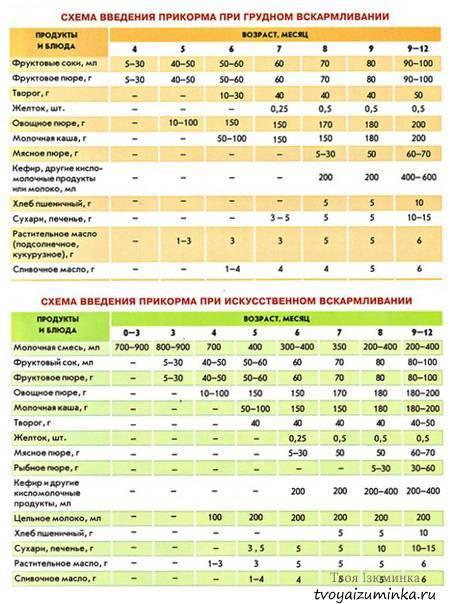 Прикорм при смешанном вскармливании, когда вводить первый прикорм, схема, таблица по месяцам