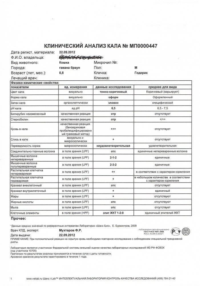 Анализ крови на глисты: как по анализу крови определить наличие глистов