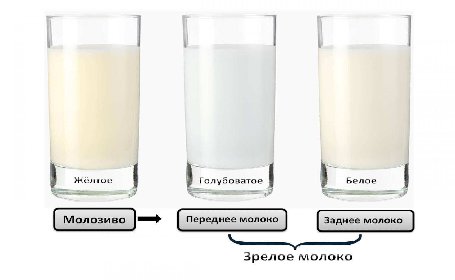 Какого цвета грудное молоко: почему оно желтое, прозрачное, зеленоватое | опыт | vpolozhenii.com
