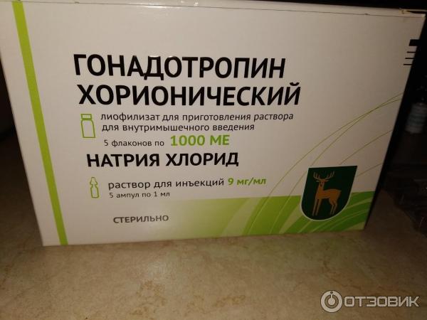 Гонадотропин хорионический:дозировка для мужчин, при беременности