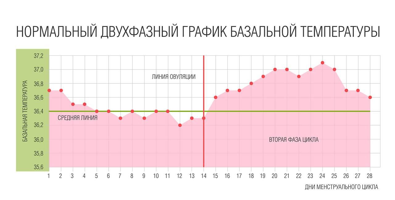 Базальная температура перед месячными: какая должна быть, норма и отклонения