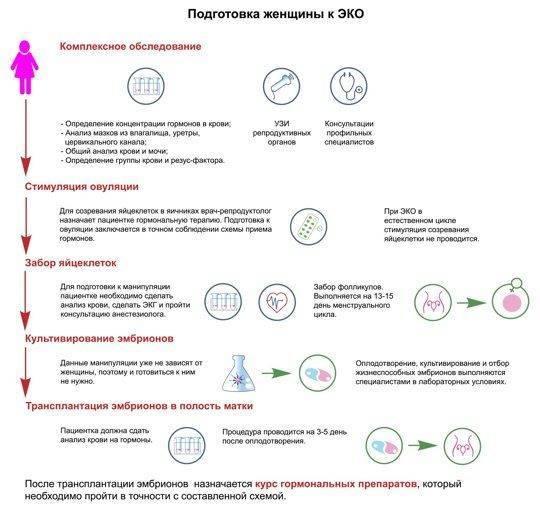 С чего начать планировать беременность: анализы, обследования, необходимые витамины
