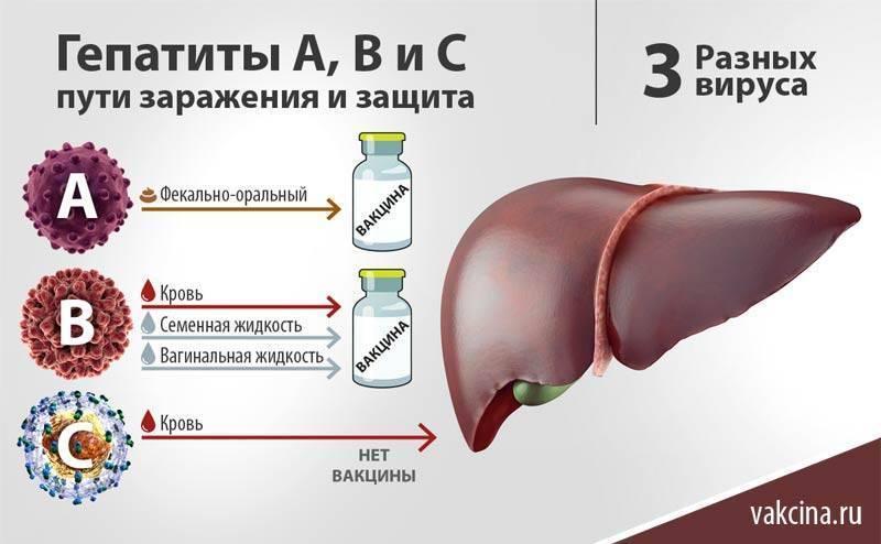 Гепатит а у детей: первые признаки, причины, лечение и профилактика