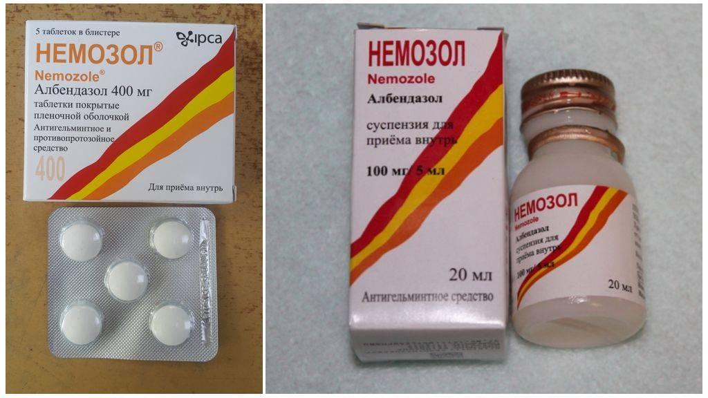 Действие препарата немозол 400 при глистах и паразитах