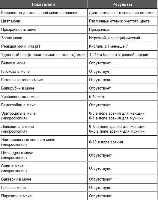 Анализ мочи,  расшифровка. нормы анализа мочи. норма белка, эритроцитов, лейкоцитов, глюкозы, эпителия, билирубина, цилиндров и бактерий в моче. :: polismed.com