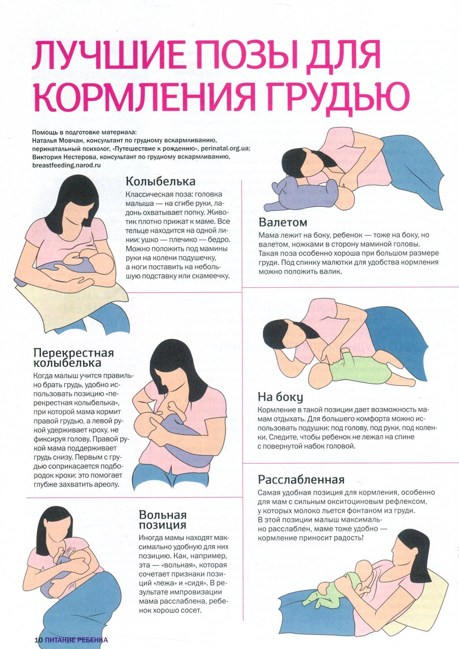 Позы для кормления новорожденных грудным молоком: фото ребенка с пояснениями, а также какое положение при гв для малыша будет правильным и удобным?