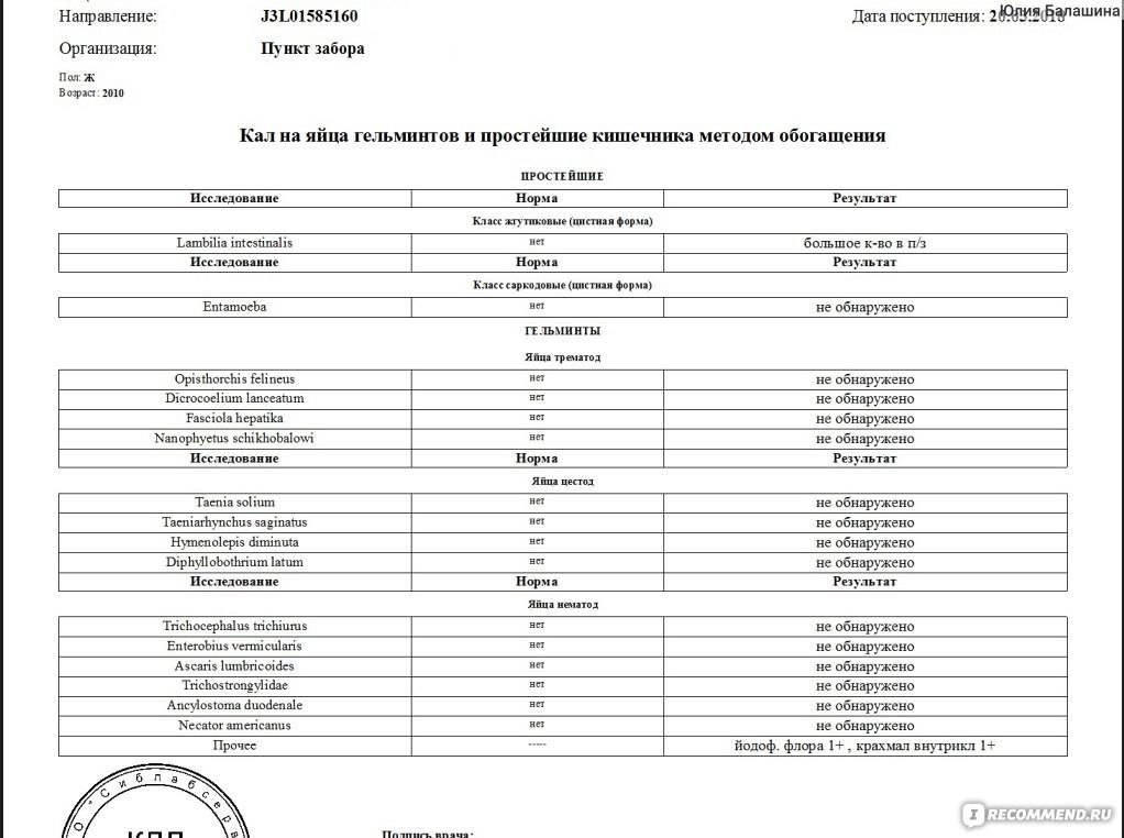 Анализ кала на лямблии: показания к исследованию и правила сбора материала, особенности подготовки