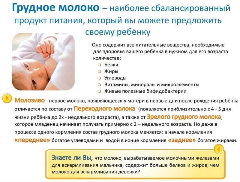 Способы повышения жирности грудного молока кормящей маме