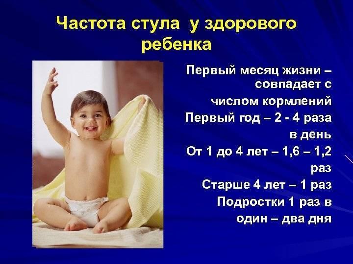 Сколько раз ребёнок должен какать ? новорожденный.