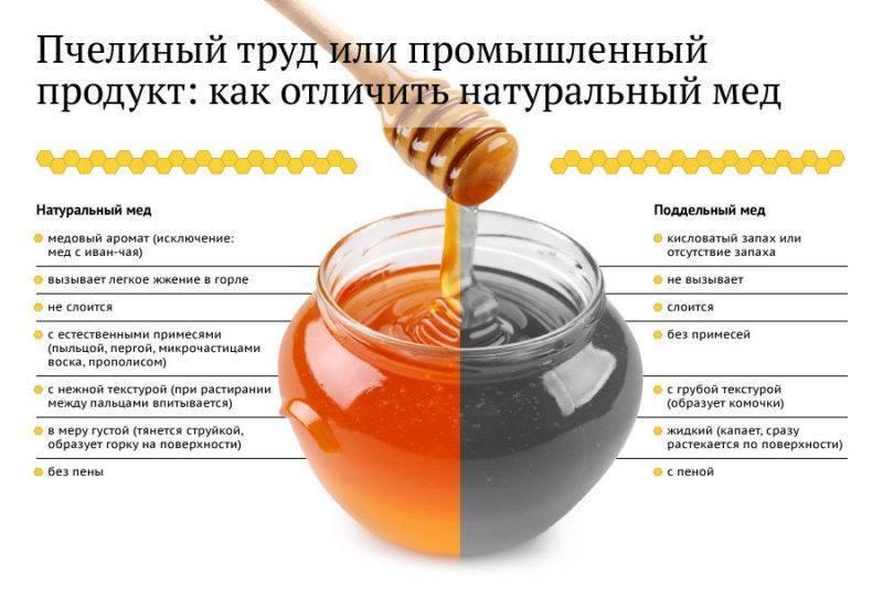 Можно ли пить мед при беременности: польза и вред на ранних сроках