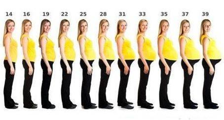 Когда во время беременности начинает расти грудь?