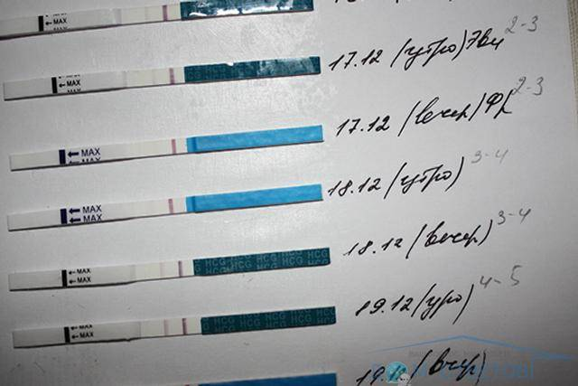 Тест показывает 1 полоску, а месячных нет: причины и лечение, если отсутствует беременность