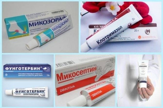 Мазь от грибка кожи - список самых эффективных для лечения различных видов заболевания, описание и цены